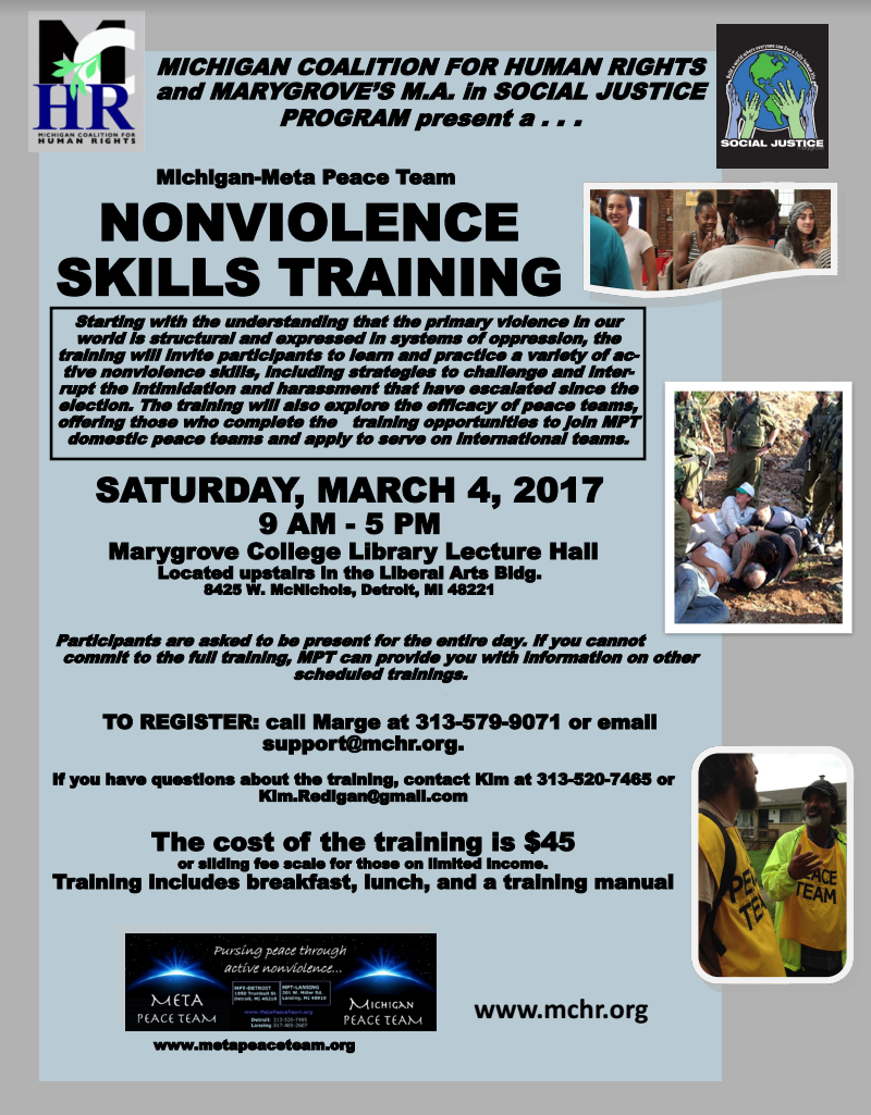 nonviolence training
